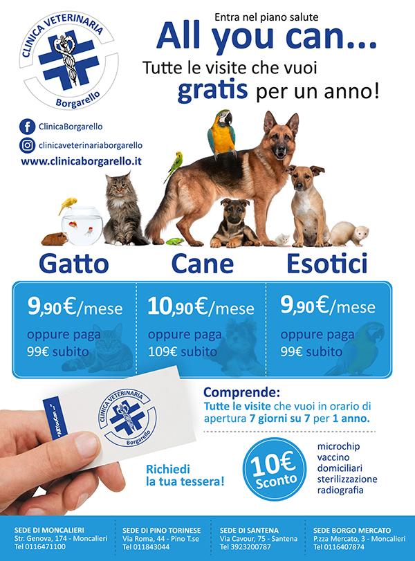 piani-salute-cane